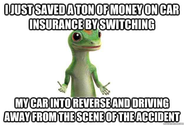 I just saved a ton of money on car insurance by switching my car into reverse and driving away from the scene of the accident  Geico Gecko
