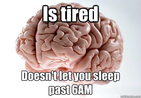 Is tired past 6AM Doesn't let you sleep - Is tired past 6AM Doesn't let you sleep  Scumbag Brain