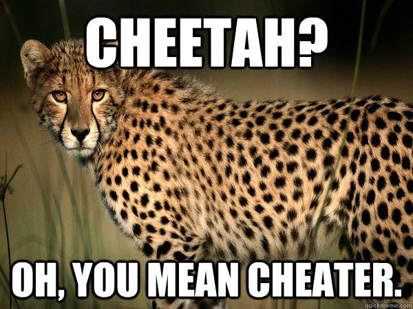 Cheetah Oh You Mean Cheater Truth Cheetah Quickmeme