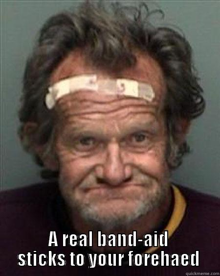 drunk band aid head -  A REAL BAND-AID STICKS TO YOUR FOREHAED Misc
