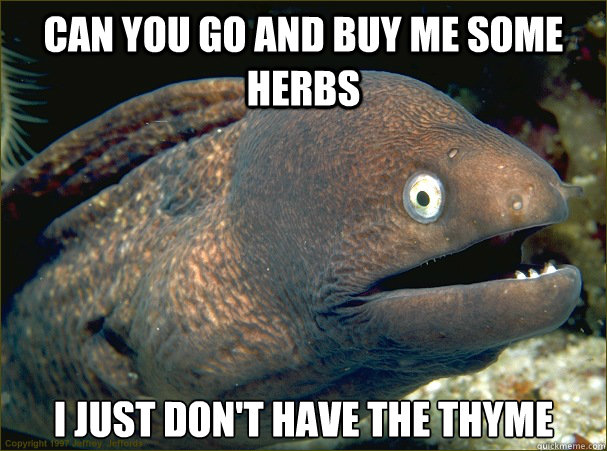 can you go and buy me some herbs I just don't have the thyme - can you go and buy me some herbs I just don't have the thyme  Bad Joke Eel