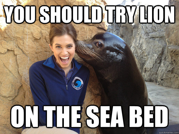 YOU SHOULD TRY LION ON THE SEA BED - YOU SHOULD TRY LION ON THE SEA BED  Sea Lion