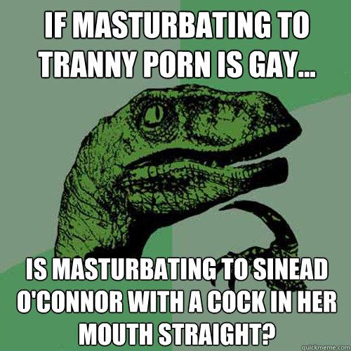 Is Tranny Porn Gay 33