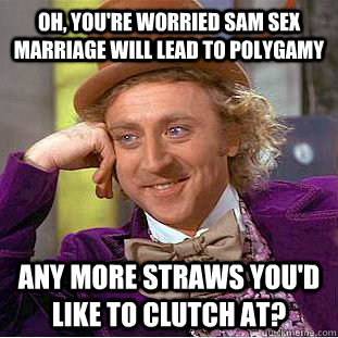 Oh, you'RE WORRIED SAM SEX MARRIAGE WILL LEAD TO POLYGAMY ANY MORE STRAWS YOU'D LIKE TO CLUTCH AT? - Oh, you'RE WORRIED SAM SEX MARRIAGE WILL LEAD TO POLYGAMY ANY MORE STRAWS YOU'D LIKE TO CLUTCH AT?  Condescending Wonka