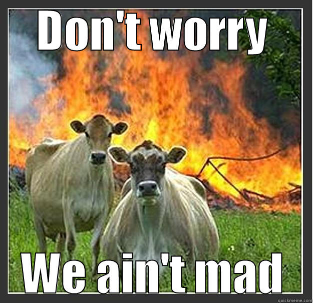 DON'T WORRY WE AIN'T MAD Evil cows