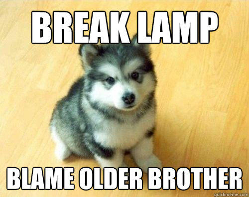 Break lamp blame older brother - Break lamp blame older brother  Baby Courage Wolf