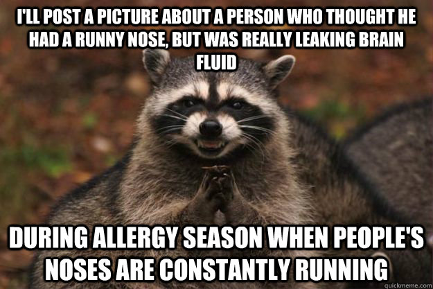 I'll post a picture about a person who thought he had a runny nose, but was really leaking brain fluid during allergy season when people's noses are constantly running - I'll post a picture about a person who thought he had a runny nose, but was really leaking brain fluid during allergy season when people's noses are constantly running  Evil Plotting Raccoon