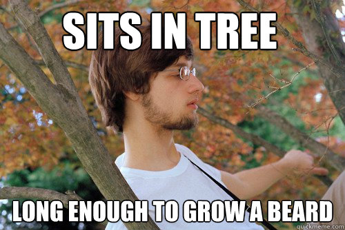 Sits in tree Long enough to grow a beard