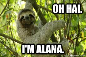 e902f8e01a4af66ce778cdee00ad7042ad1114bcbf9b475bb1d4eee1d27325dd alana sloth memes quickmeme