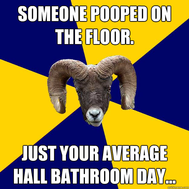 Someone pooped on the floor. Just your average hall bathroom day...  Suffolk Kid Ram