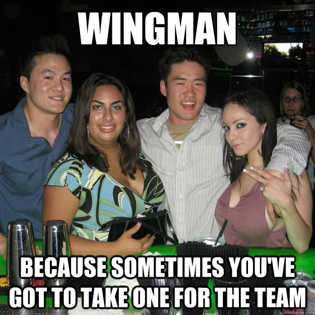 WINGMAN Because sometimes you've got to take one for the team - WINGMAN Because sometimes you've got to take one for the team  Wingman