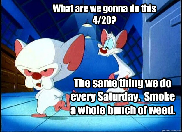 What are we gonna do this 4/20? The same thing we do every Saturday.  Smoke a whole bunch of weed. - What are we gonna do this 4/20? The same thing we do every Saturday.  Smoke a whole bunch of weed.  Pinky and the Brain