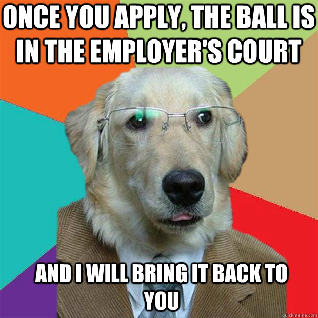 Once you apply, the ball is in the employer's court And I will bring it back to you - Once you apply, the ball is in the employer's court And I will bring it back to you  Business Dog