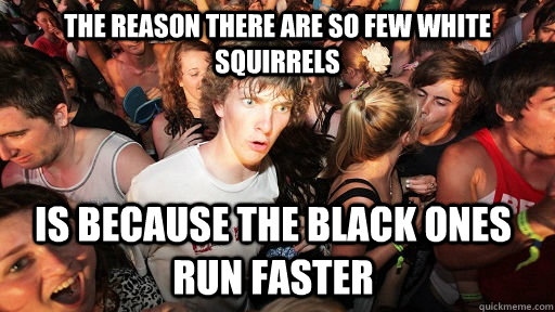 The reason there are so few white squirrels is because the black ones run faster - The reason there are so few white squirrels is because the black ones run faster  Sudden Clarity Clarence