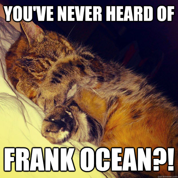YOU'VE NEVER HEARD OF FRANK OCEAN?! - YOU'VE NEVER HEARD OF FRANK OCEAN?!  Frustration Cat