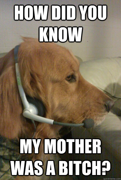 How did you know My mother was a bitch? - How did you know My mother was a bitch?  Xbox Live Dog