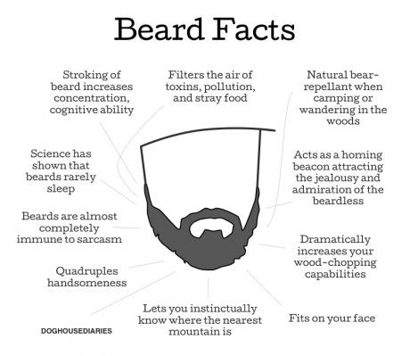 Some fun facts for those of us who are bearded. Happy No Shave November Everyone! -   Misc