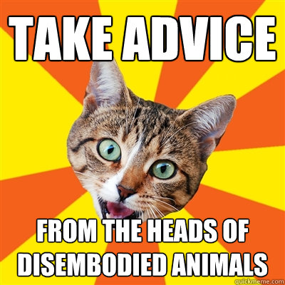 take advice from the heads of disembodied animals - take advice from the heads of disembodied animals  Bad Advice Cat