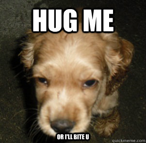 hug me   OR i'll bite u  - hug me   OR i'll bite u   choco-meme
