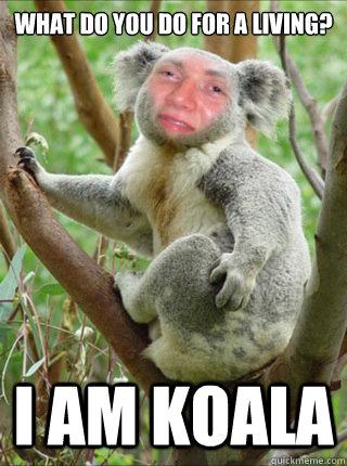 what do you do for a living? I am koala