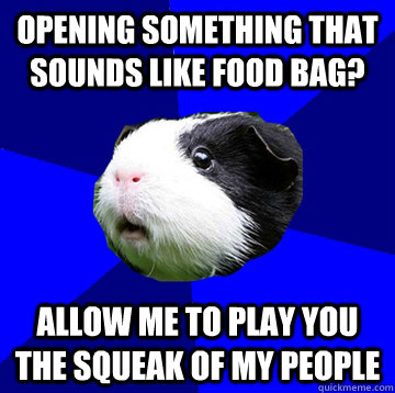 Opening something that sounds like food bag? Allow me to play you the squeak of my people