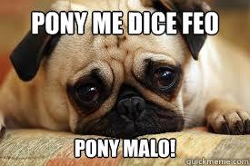 Pony me dice feo Pony malo!