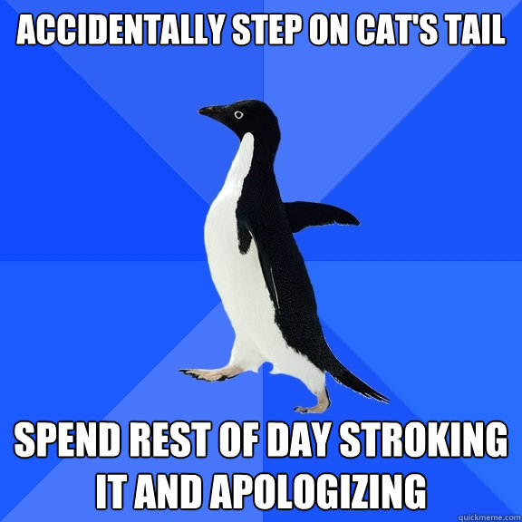 accidentally step on cat's tail spend rest of day stroking it and apologizing - accidentally step on cat's tail spend rest of day stroking it and apologizing  Socially Awkward Penguin
