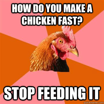 How do you make a Chicken fast? Stop Feeding it - How do you make a Chicken fast? Stop Feeding it  Anti-Joke Chicken
