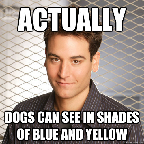 actually dogs can see in shades of blue and yellow  Scumbag Ted Mosby