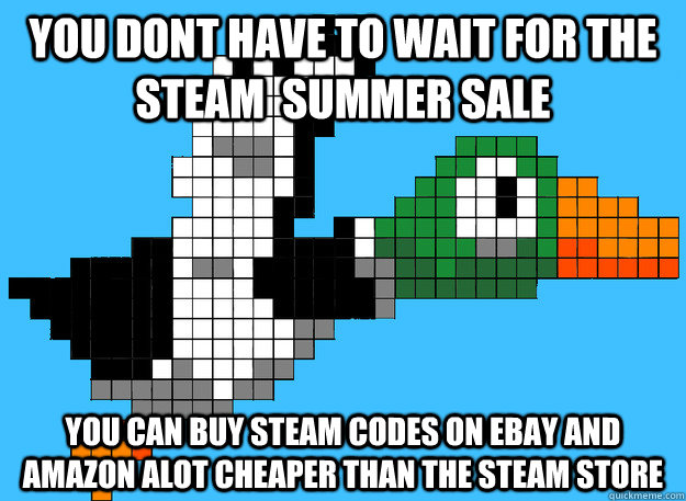 You dont have to wait for the steam  summer sale you can buy steam codes on ebay and amazon alot cheaper than the steam store - You dont have to wait for the steam  summer sale you can buy steam codes on ebay and amazon alot cheaper than the steam store  Gaming Advice Mallard