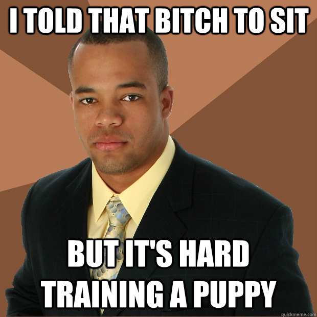 I told that bitch to sit But it's hard training a puppy - I told that bitch to sit But it's hard training a puppy  Successful Black Man