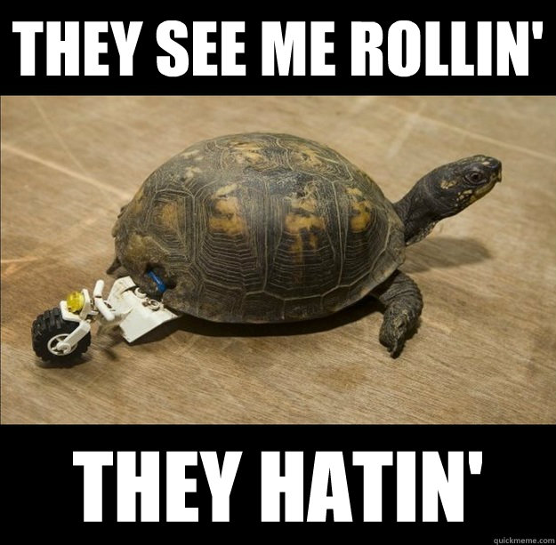 eaf945d8b7399ee96e5381c512003b288804cf1f5eca2b567d072e7bfd4c5c68 they see me rollin' they hatin' turtle lego roll quickmeme