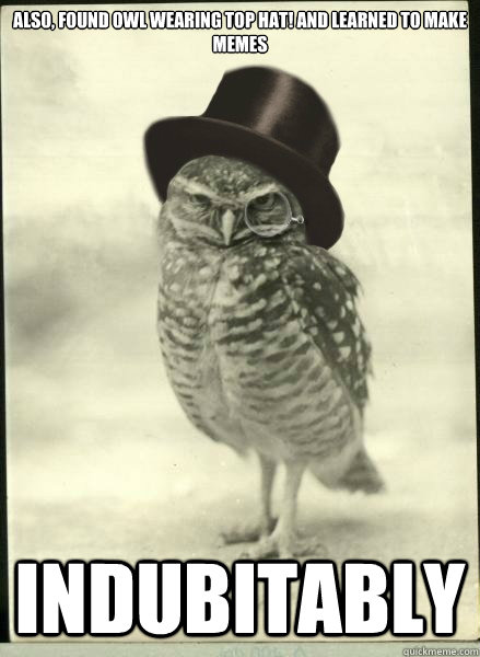 also, found owl wearing top hat! and learned to make memes indubitably  Superb Owl