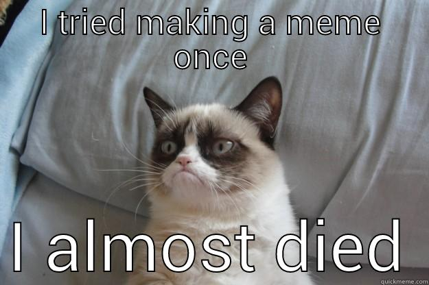 I TRIED MAKING A MEME ONCE I ALMOST DIED Grumpy Cat