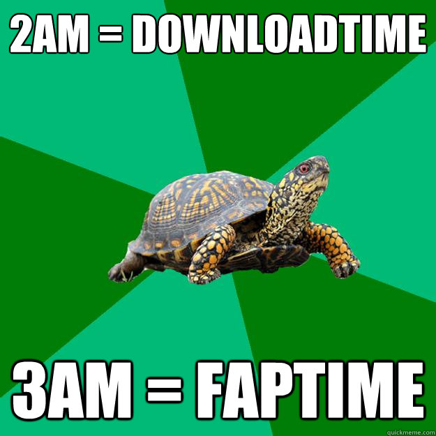 2am = downloadtime 3am = faptime - 2am = downloadtime 3am = faptime  Torrenting Turtle