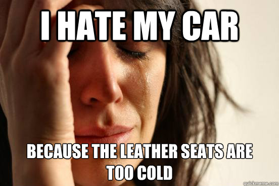 i hate my car because the leather seats are  too cold - i hate my car because the leather seats are  too cold  First World Problems