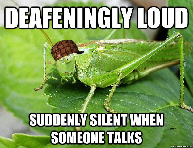 Deafeningly loud Suddenly silent when someone talks