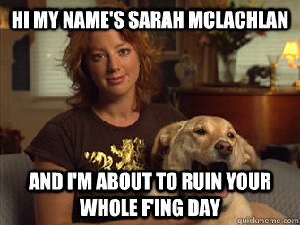 Hi my name's Sarah Mclachlan AND I'm about to ruin your whole F'ing day - Hi my name's Sarah Mclachlan AND I'm about to ruin your whole F'ing day  Sarah Mclachlan