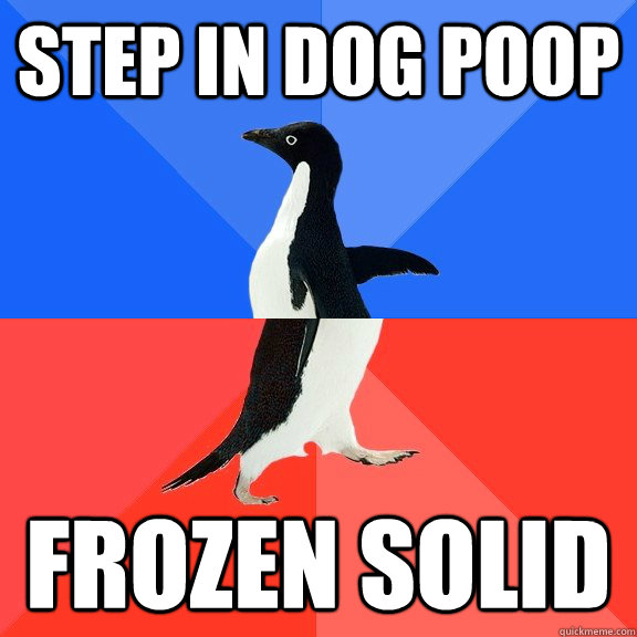 Step in dog poop Frozen solid - Step in dog poop Frozen solid  Socially Awkward Awesome Penguin