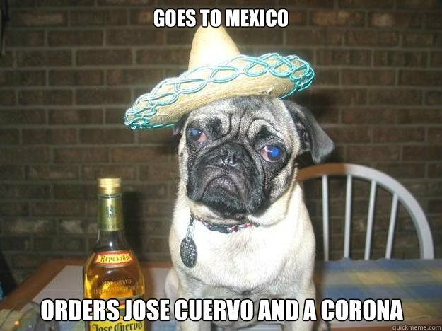 goes to mexico orders jose cuervo and a corona - goes to mexico orders jose cuervo and a corona  Vacation dog