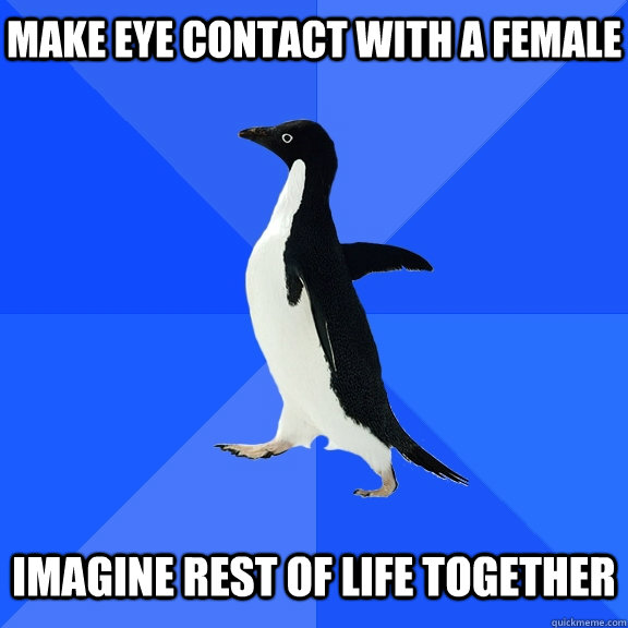 make eye contact with a female imagine rest of life together - make eye contact with a female imagine rest of life together  Socially Awkward Penguin