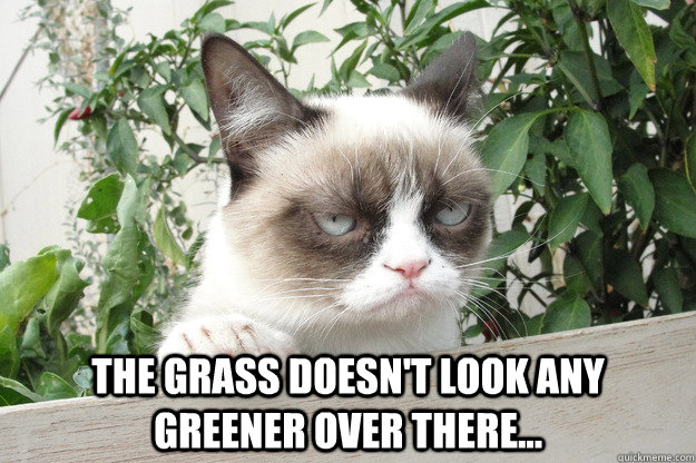 The grass doesn't look any greener over there... -  The grass doesn't look any greener over there...  Misc