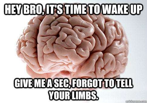 Hey bro, it's time to wake up give me a sec, forgot to tell your limbs.   - Hey bro, it's time to wake up give me a sec, forgot to tell your limbs.    Scumbag Brain