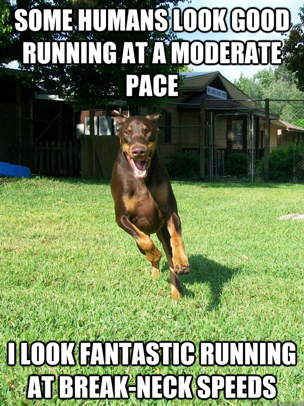 ebf86fb0004eac459a2dd7c415853c5ee851ab485246ebdb356faa565b06fb8b some humans look good running at a moderate pace i look fantastic