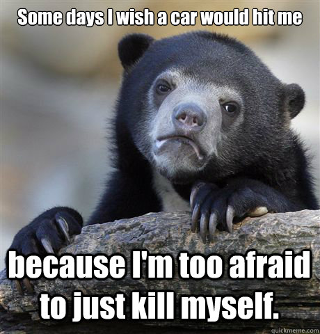 Some days I wish a car would hit me because I'm too afraid to just kill myself. - Some days I wish a car would hit me because I'm too afraid to just kill myself.  Confession Bear