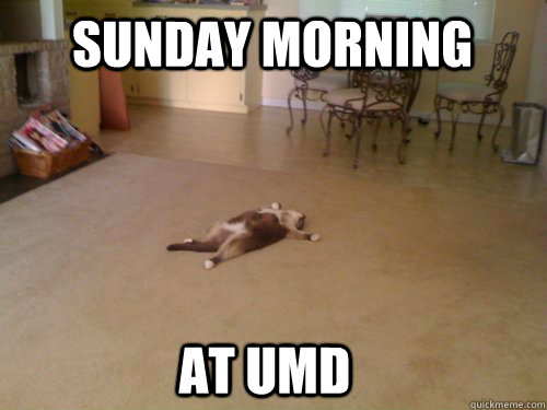 Sunday morning at UMD