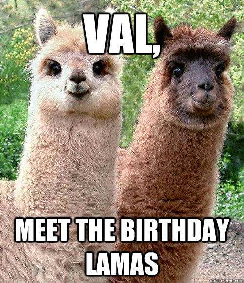 Val Meet The Birthday Lamas