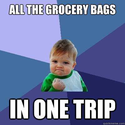 All the grocery bags in one trip - All the grocery bags in one trip  Success Kid