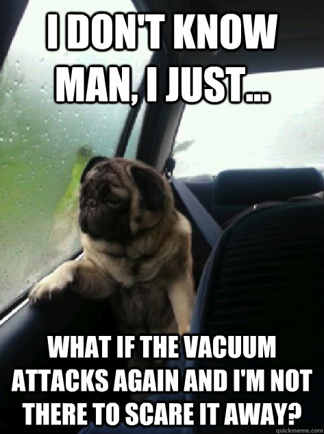I don't know man, I just... What if the vacuum attacks again and I'm not there to scare it away? - I don't know man, I just... What if the vacuum attacks again and I'm not there to scare it away?  Introspective Pug