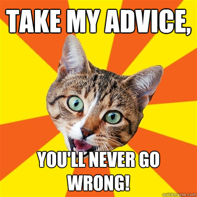 take my advice, you'll never go wrong! - take my advice, you'll never go wrong!  Bad Advice Cat